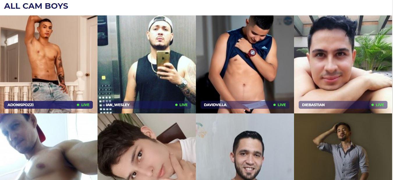 Jerkmate Gay Website Review