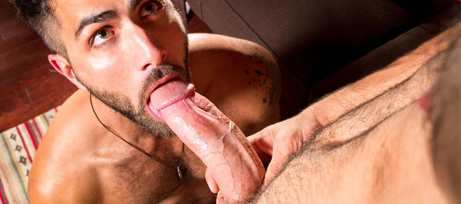 Eyes-of-the-tiger-craving-for-a-big-dick-featured-image