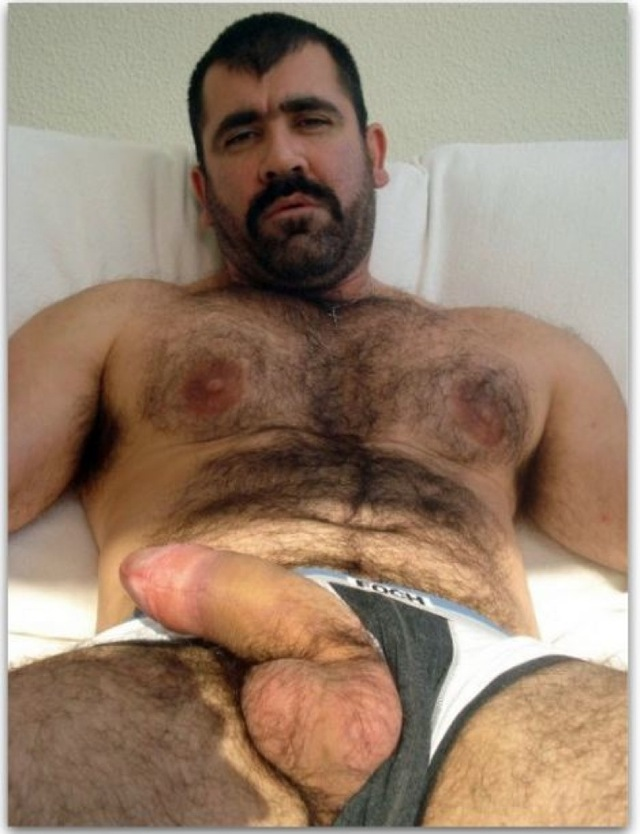 Hairy Bear Huge Dick