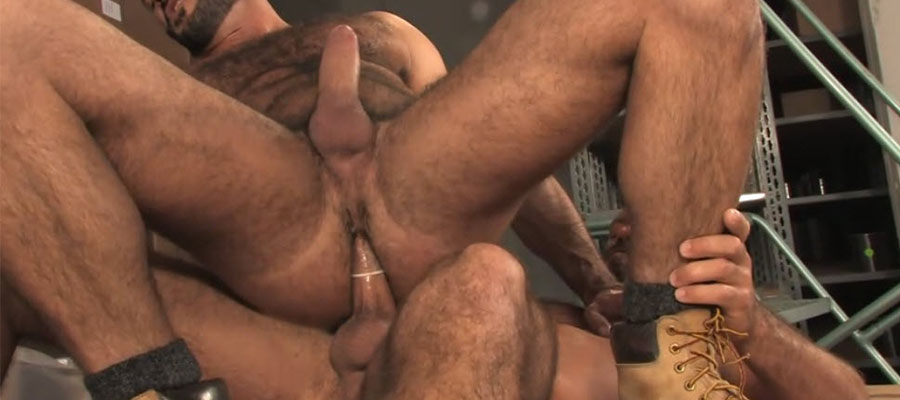 Hairy Hardore love