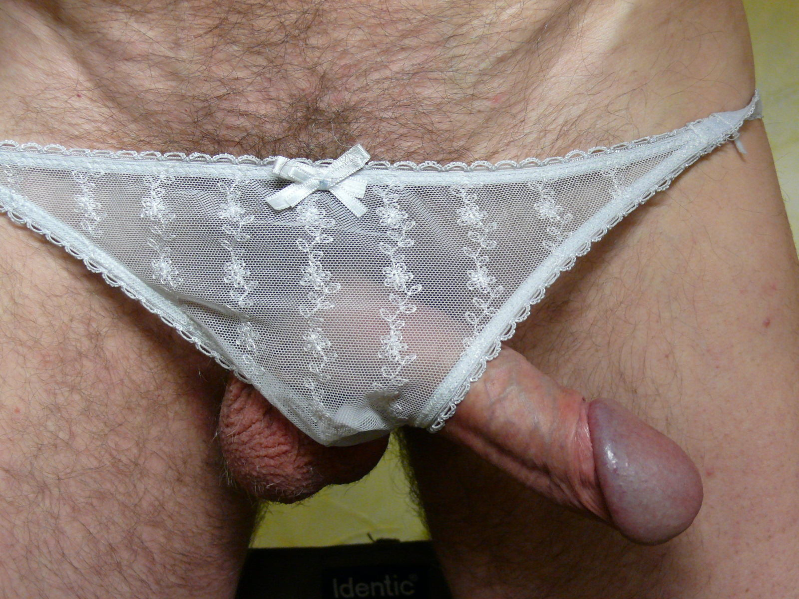 My-cock-in-panties-for-my-gay-friends