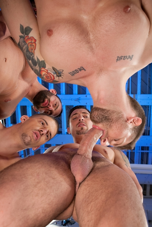 Blowjob fest gay party